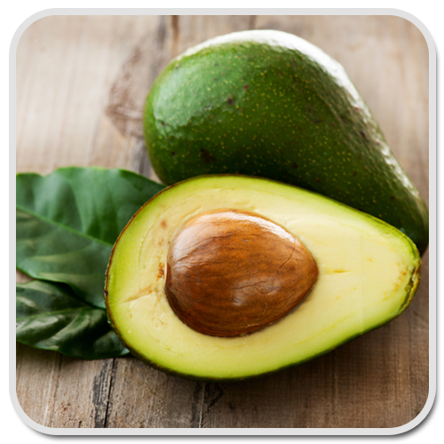 avocado-olea